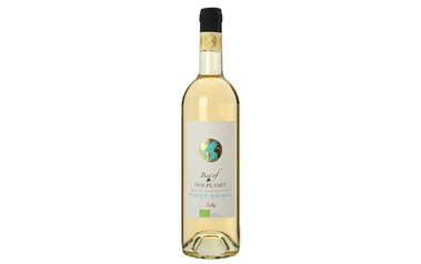 Best Of Our Planet Pinot Grigio Wit | Bio